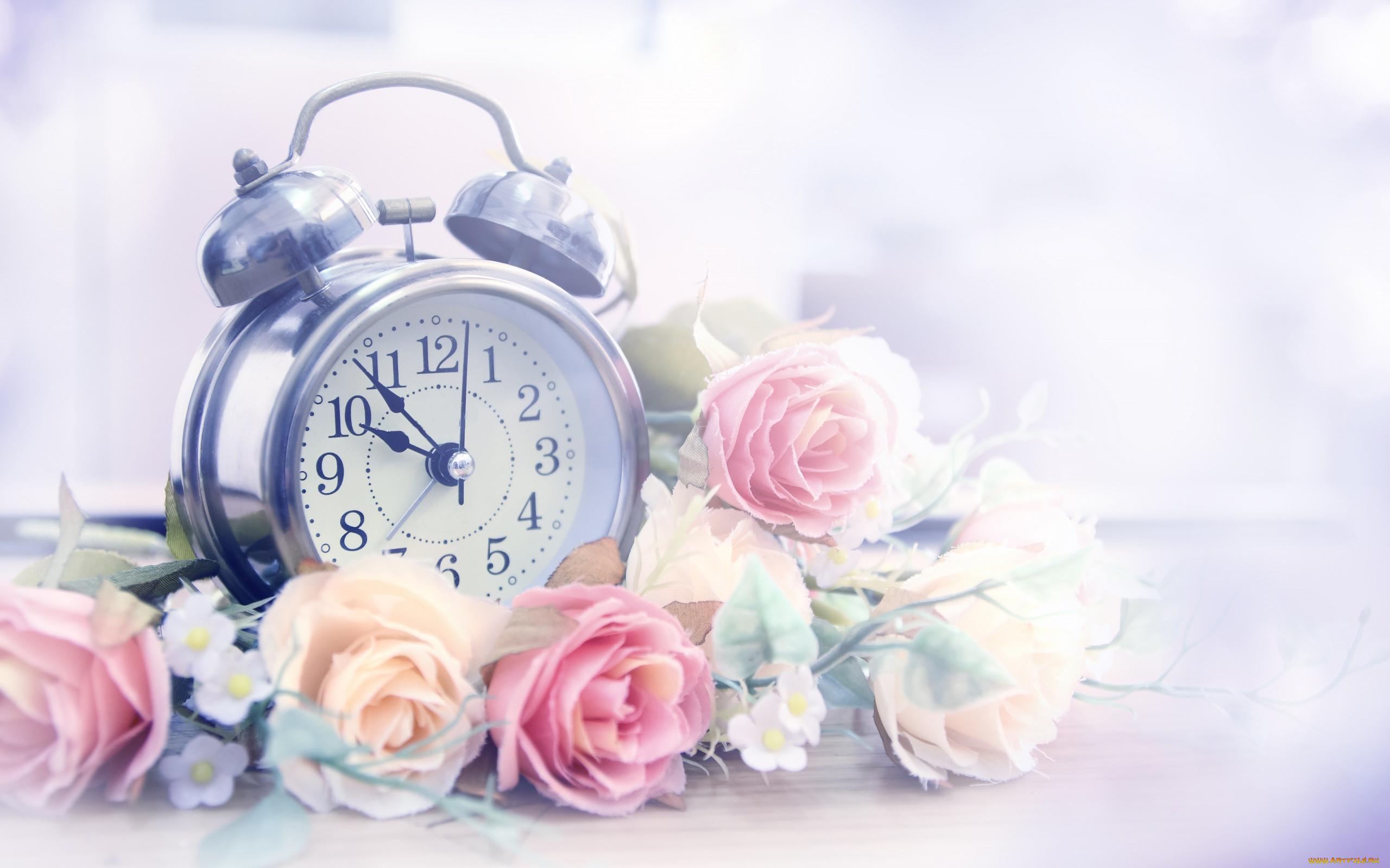 Картинки цветов часы работы
